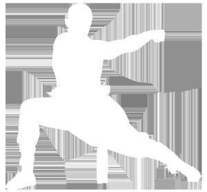 Kung Fu / Wushu in Köln